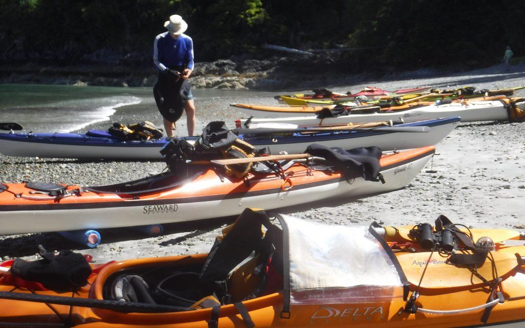 Sea Kayaking Level II Skills
